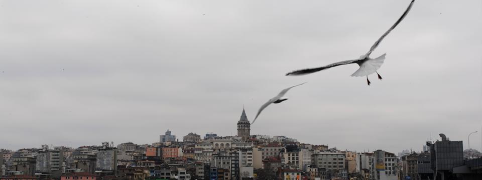 {touristFly_istanbulTours}